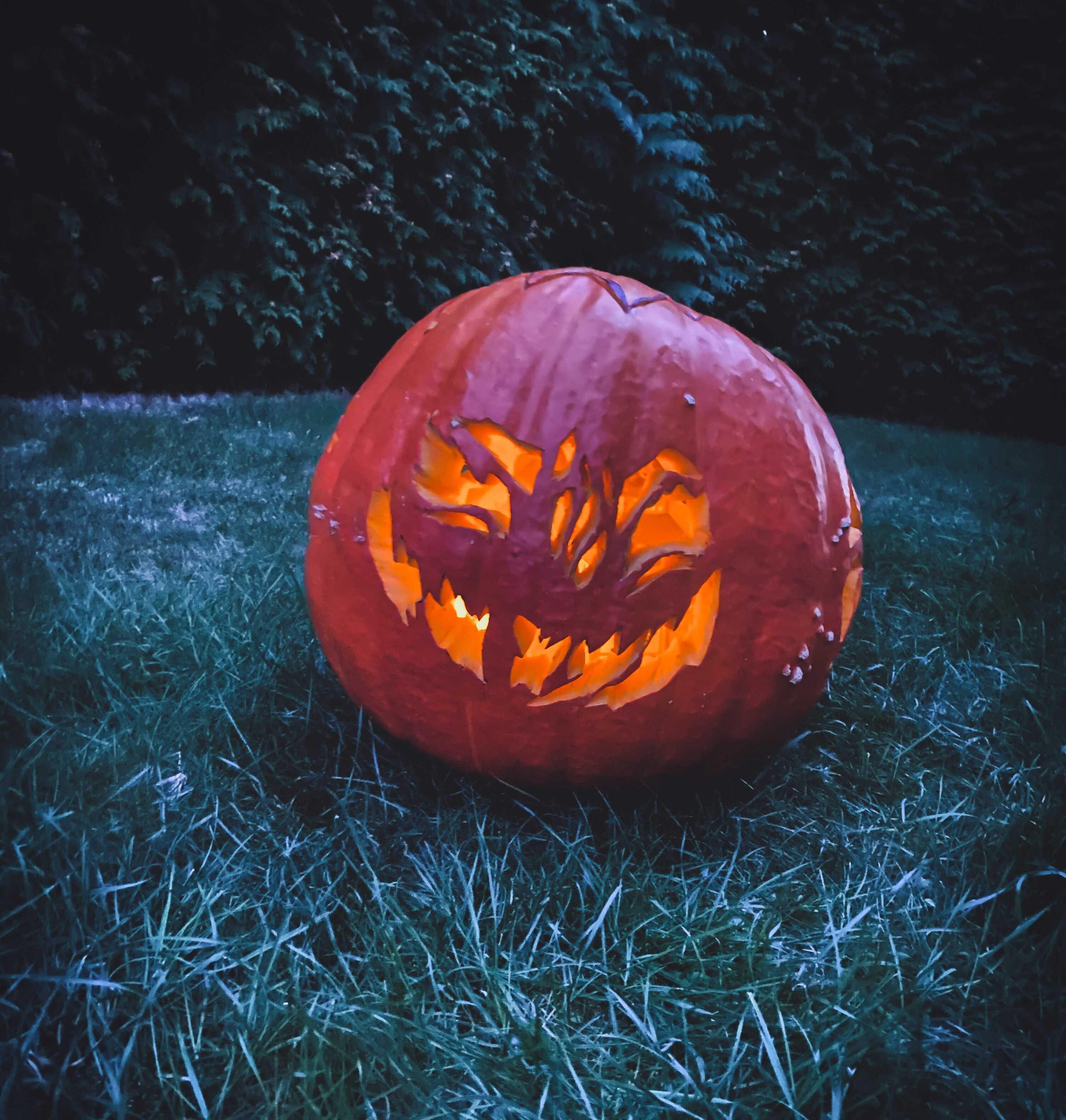 Halloween a dýně ?