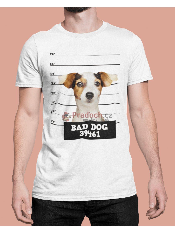 bad dog 1 (1) min