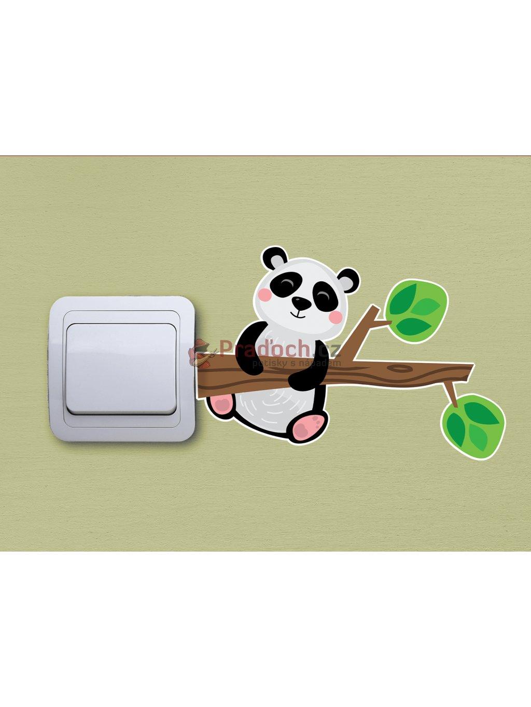 panda na vetvi min (1)