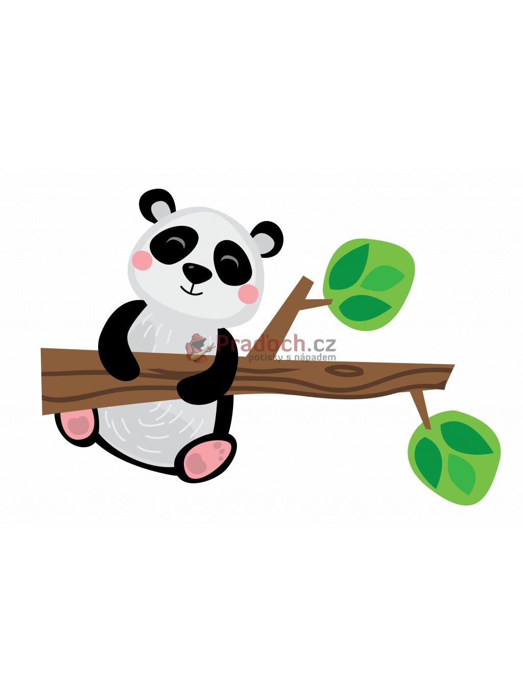 panda na vetvi min (2)