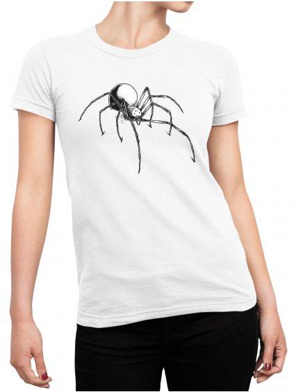 mockup pavouk min