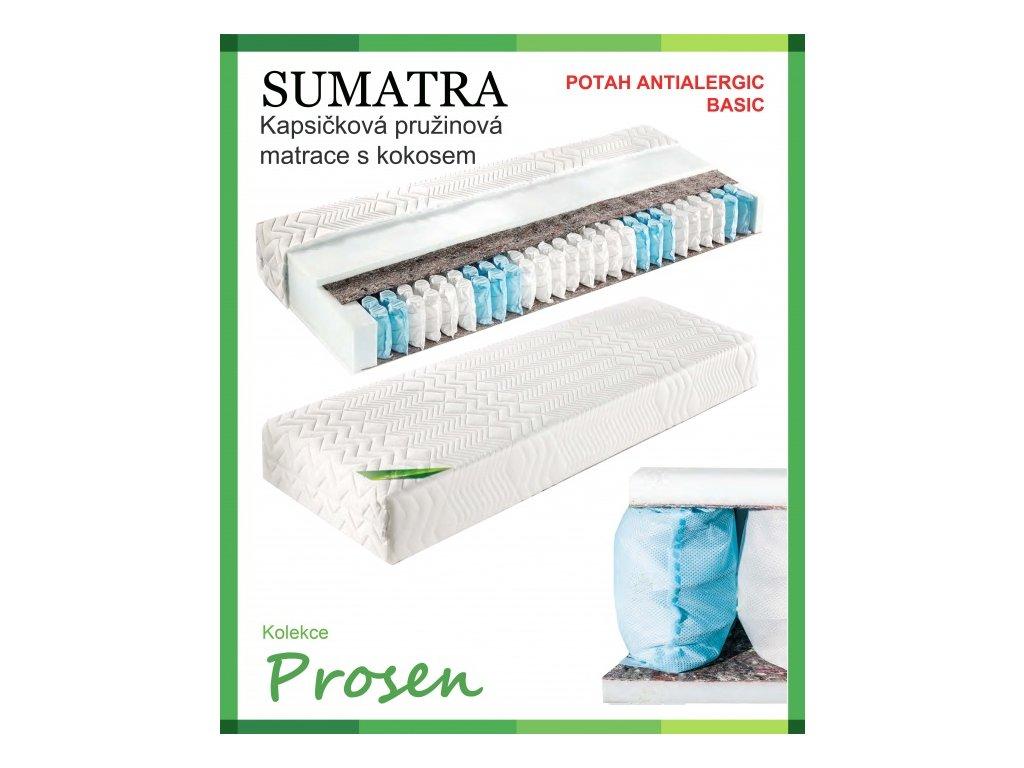 zdravotni matrace pruzinova sumatra potah anti allergic basic original