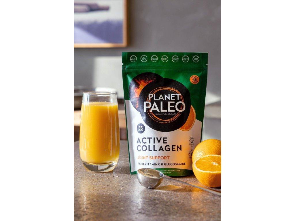 PLANET PALEO - Hydrolyzovaný hovězí kolagen pro sportovce, oslabenou imunitu a záněty - ACTIVE COLLAGEN