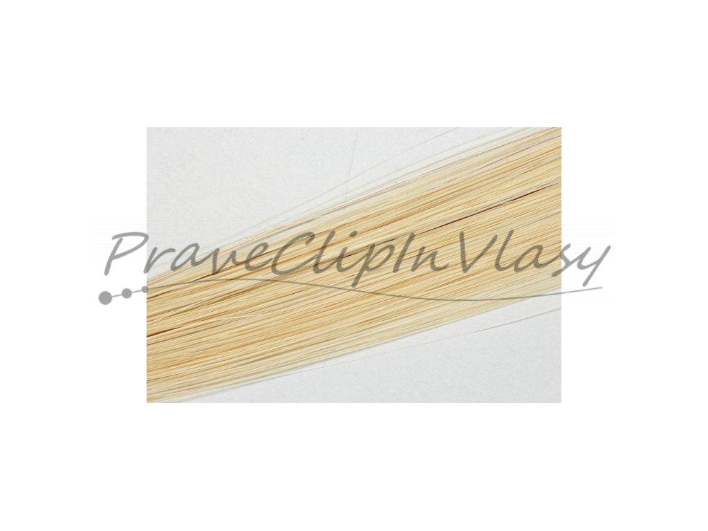 Clip in ofina - Velmi Světlá Popelavá Blond barva