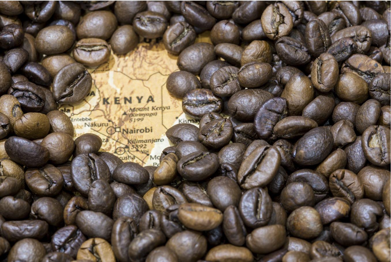 Keňská káva