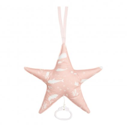 0003162 little dutch muziekdoos ster ocean pink 0