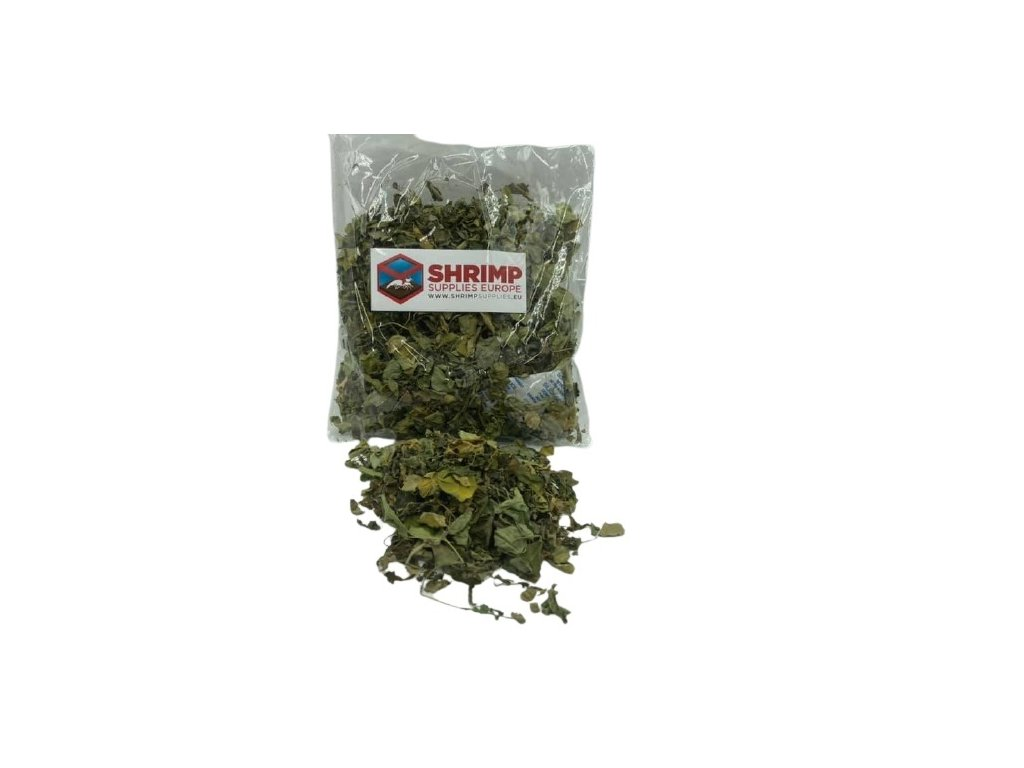 shrimp supplies moringa leaves (1)