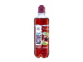 fresh Red Berry 0,5l PET EW Export