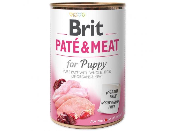 brit pate puppy