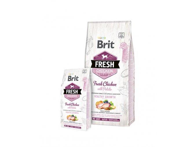 brit fresh chicken puppy