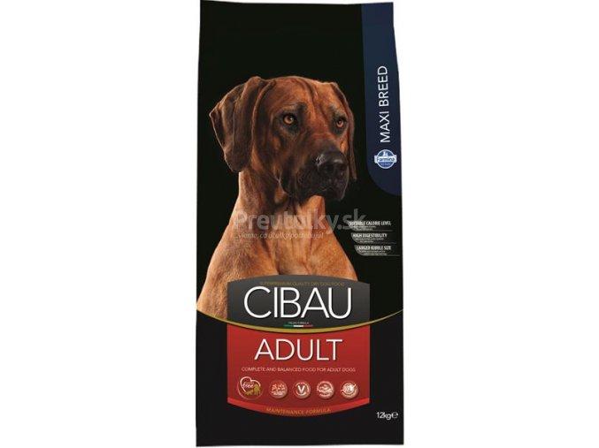 cibau adult maxi 12