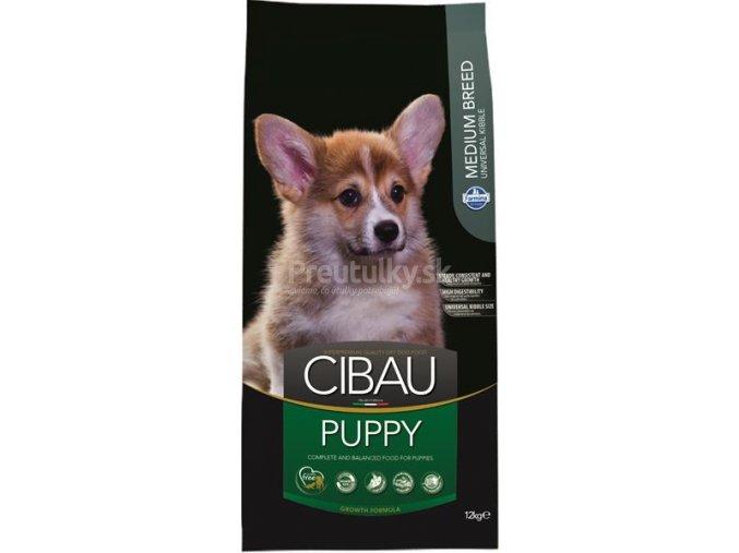 cibau puppy 12