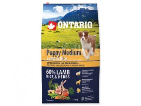 ONTARIO PUPPY NEW