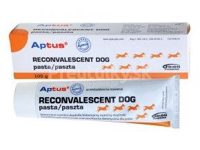 aptus reconvalescent dog