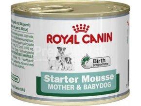 royal caninmini starter