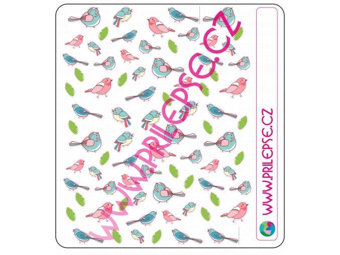 134 Ptáci