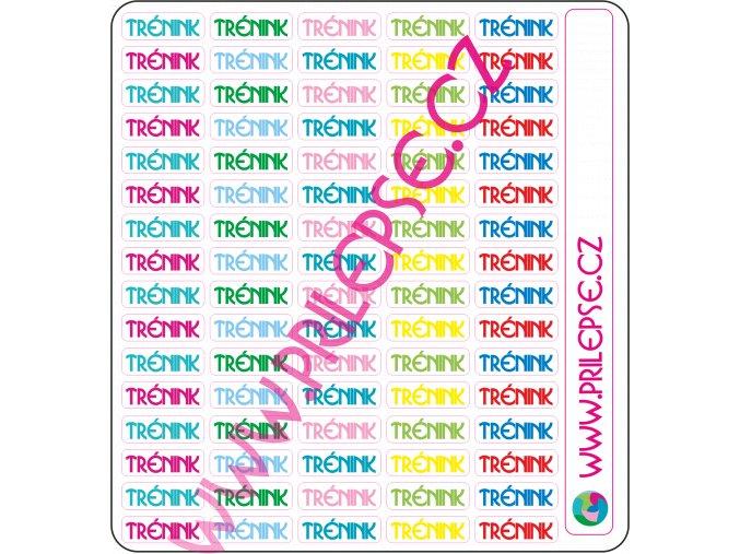 T004 Trénink