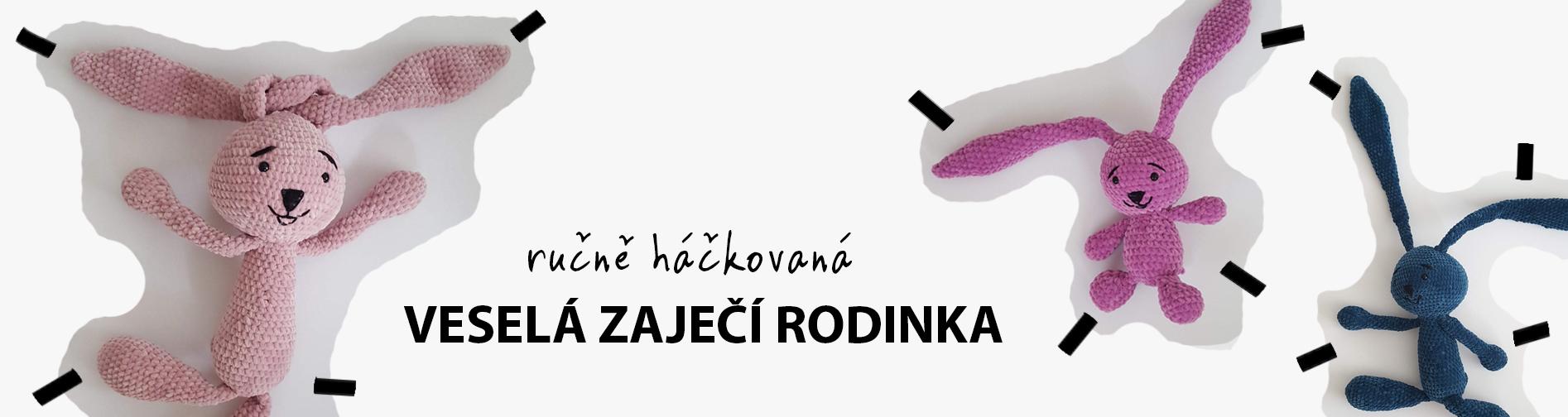 Zajicic