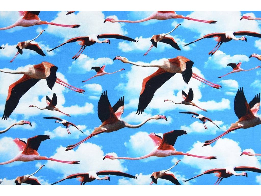 digital print flying stork