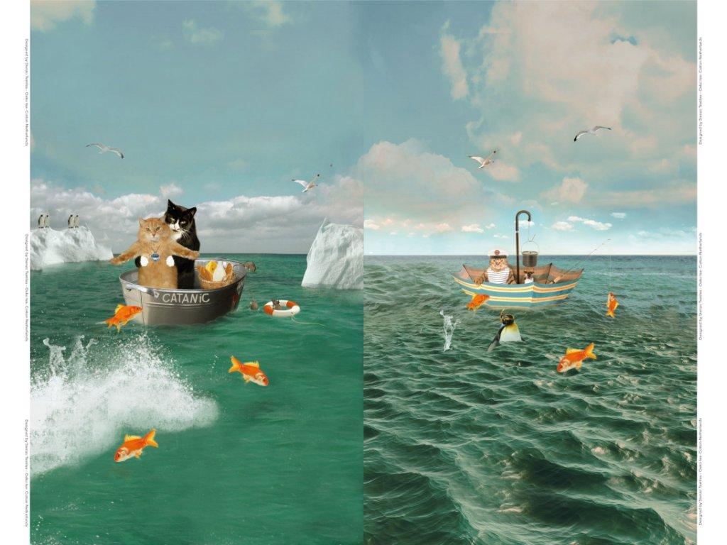Bavlněný úplet s dig. tiskem, šíře 150 až 160 cm, Kočičky na moři