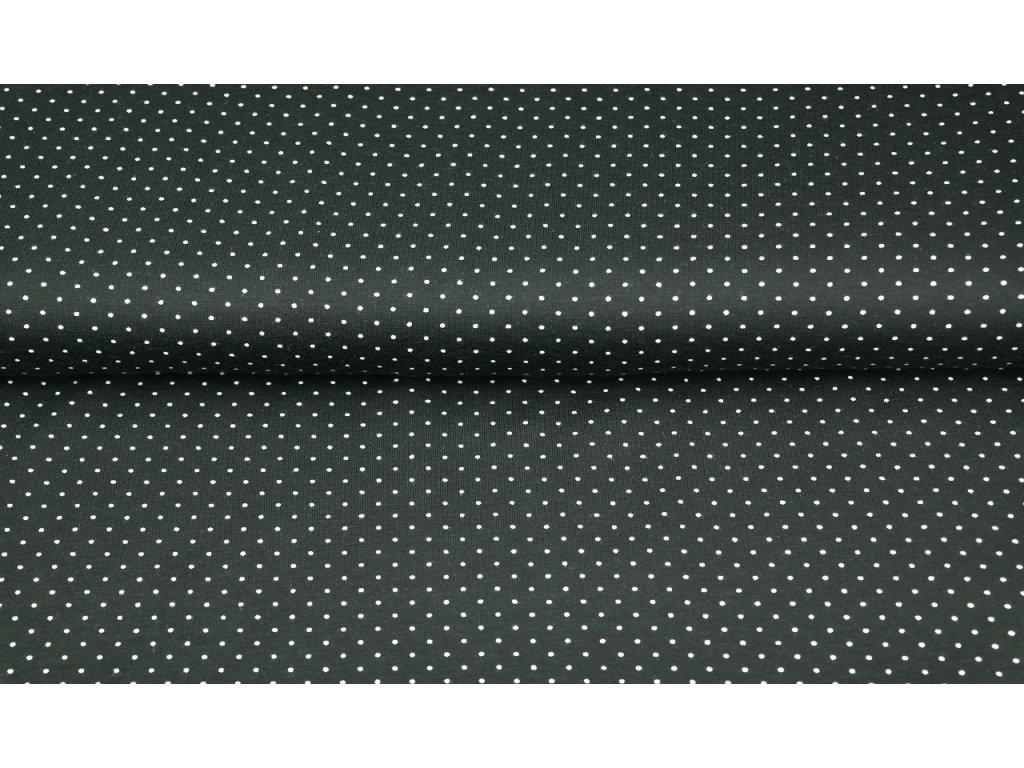 Bavlněný BIO bavlna úplet  nr. 11650-20