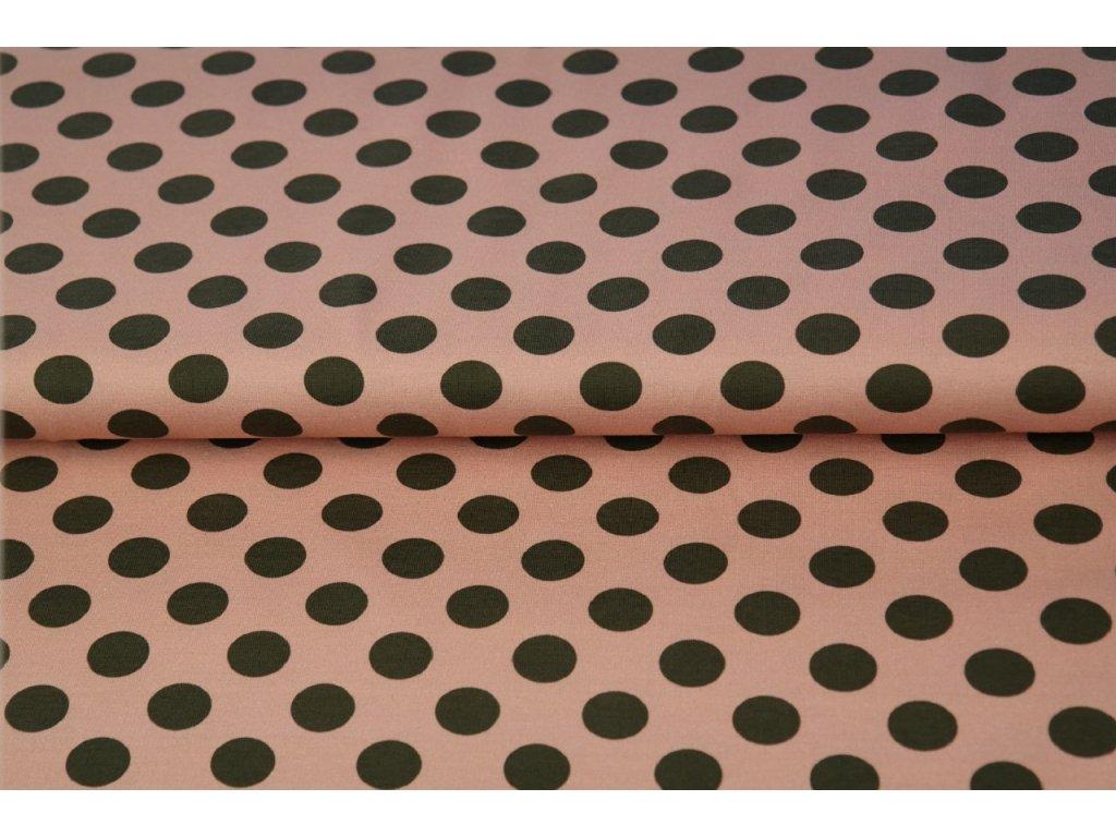 Bavlněný BIO bavlna úplet  nr. 14607-12