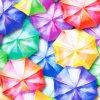 Úplety s digitálním tiskem - deštníky