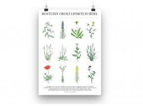 Rostliny plakat mockup 4