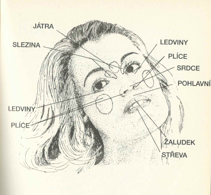 Diagnostika podle pokožky