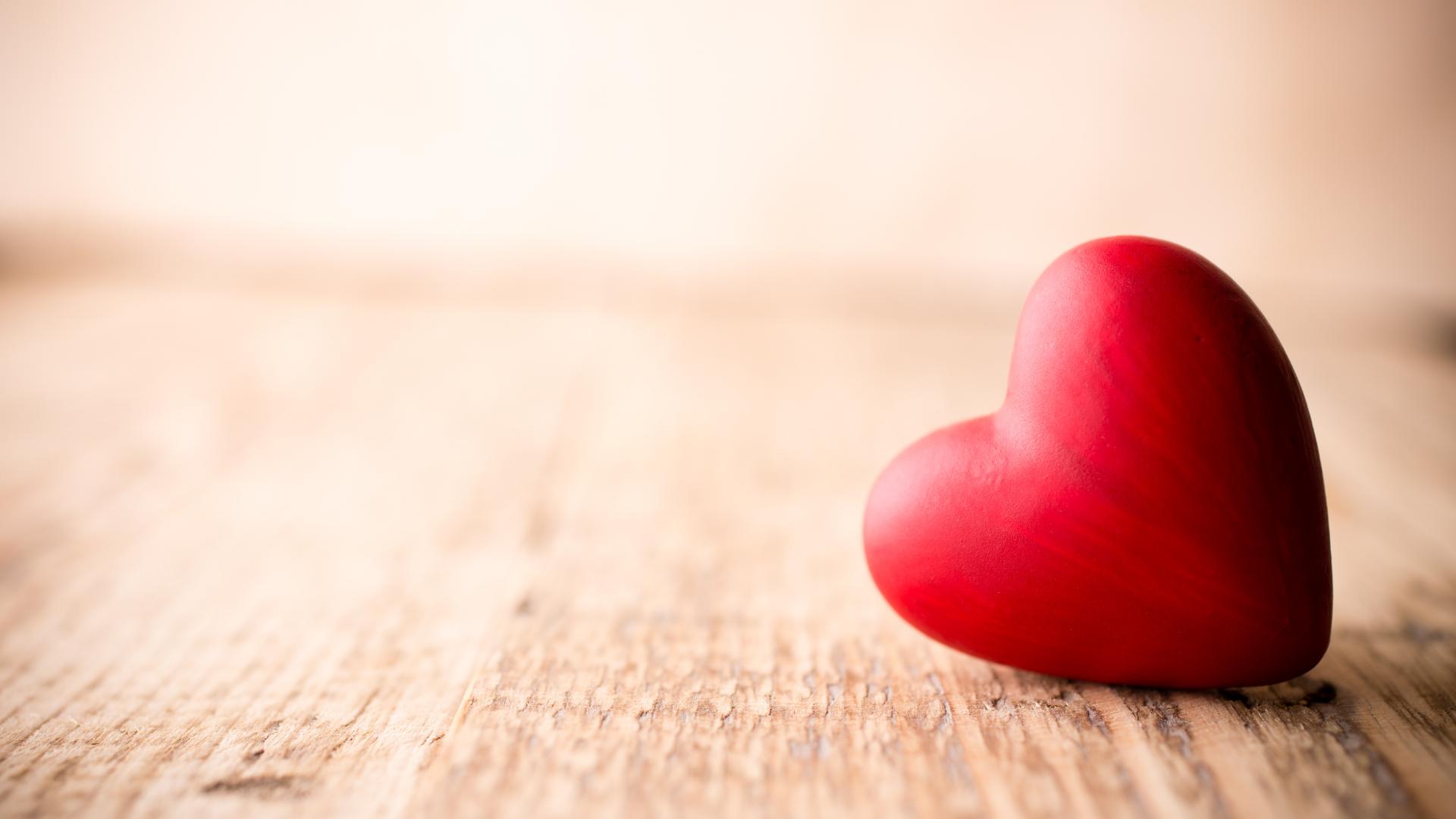 srdce - jeho části a vztahy v organismu
