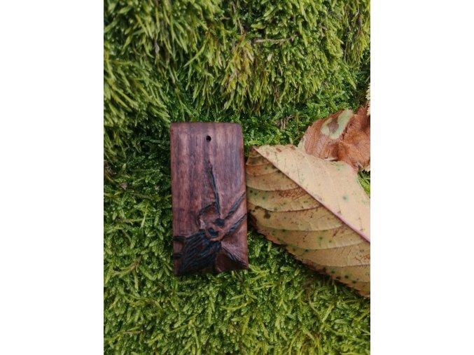 Dřevěný přívěsek šváb  DŘEVĚNÉ ŠPERKY   PŘÍRODĚ NA DOSAH