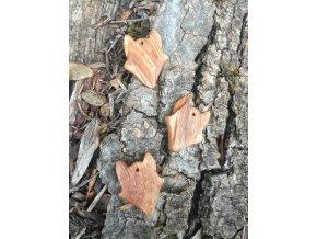 Dřevěný přívěsek vlk (dub)  DŘEVĚNÉ ŠPERKY | PŘÍRODĚ NA DOSAH