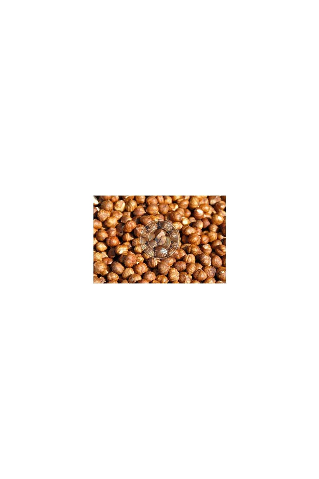 Lieskové orechy vylúpané - 250g