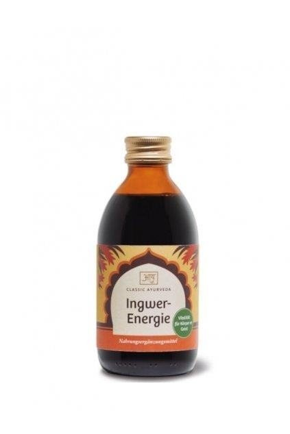 ingwer energie 250ml classic ayurveda