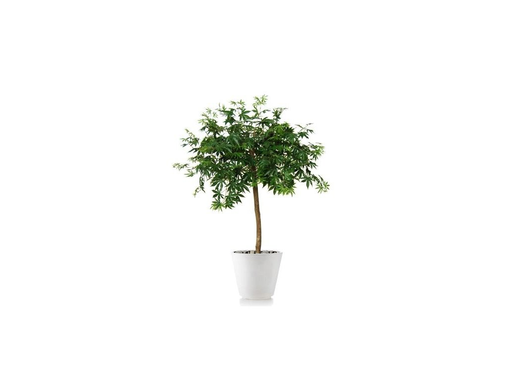765 umely strom maple topiary 120cm green