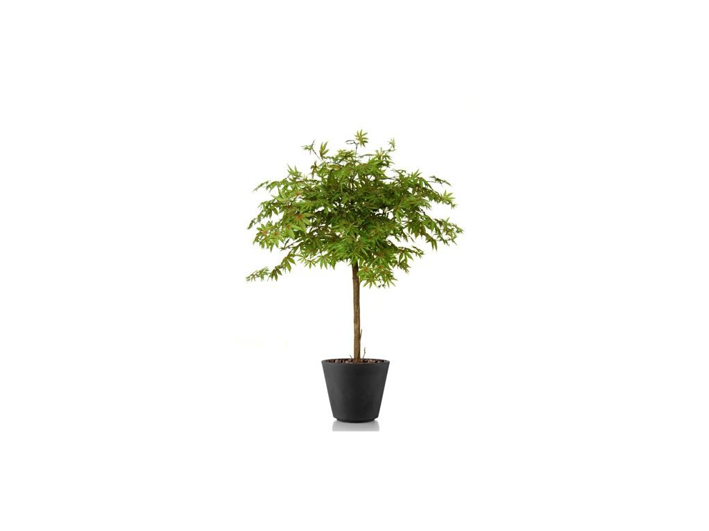 499 umely strom maple topiary 120cm multicolor