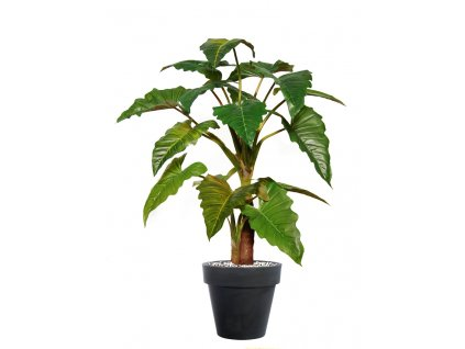 Philo Tree Arr x 2 220 cm Green 4545001
