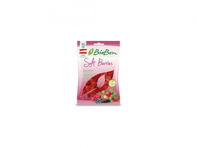 49683 bio gumove bonbony lesni ovoce 100g