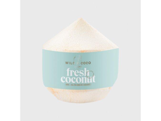 mlady kokos thajsky orezany