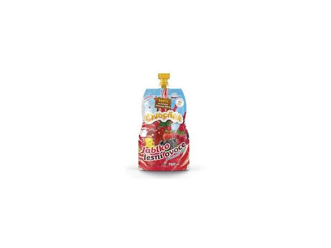 Ovocňák jablko-lesní ovoce 250ml