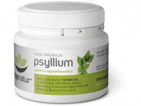 47613 psyllium kapsle 100 ks