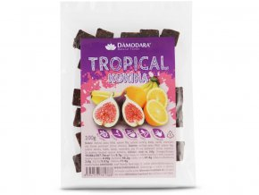 66105 ovocne kokina tropical 100g