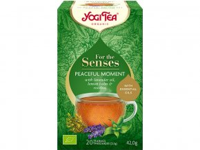 Bio Chvíle klidu yogi tea 20x2,1g