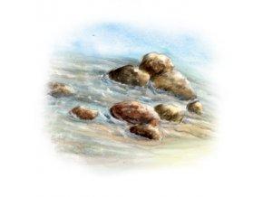 76089 yaomedica odvaleni kamenu 50 ml
