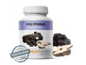 MycoMedica Polyporus 90 tobolek