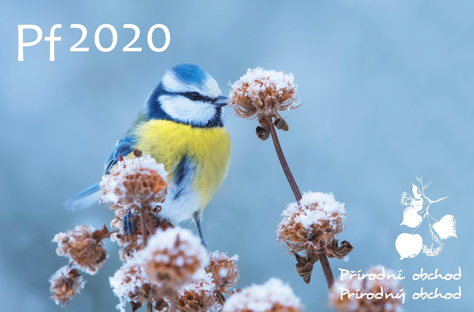 ŠŤASTNÝ NOVÝ ROK 2020!