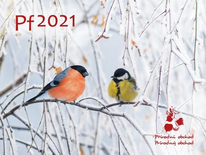 ŠŤASTNÝ NOVÝ ROK 2021!