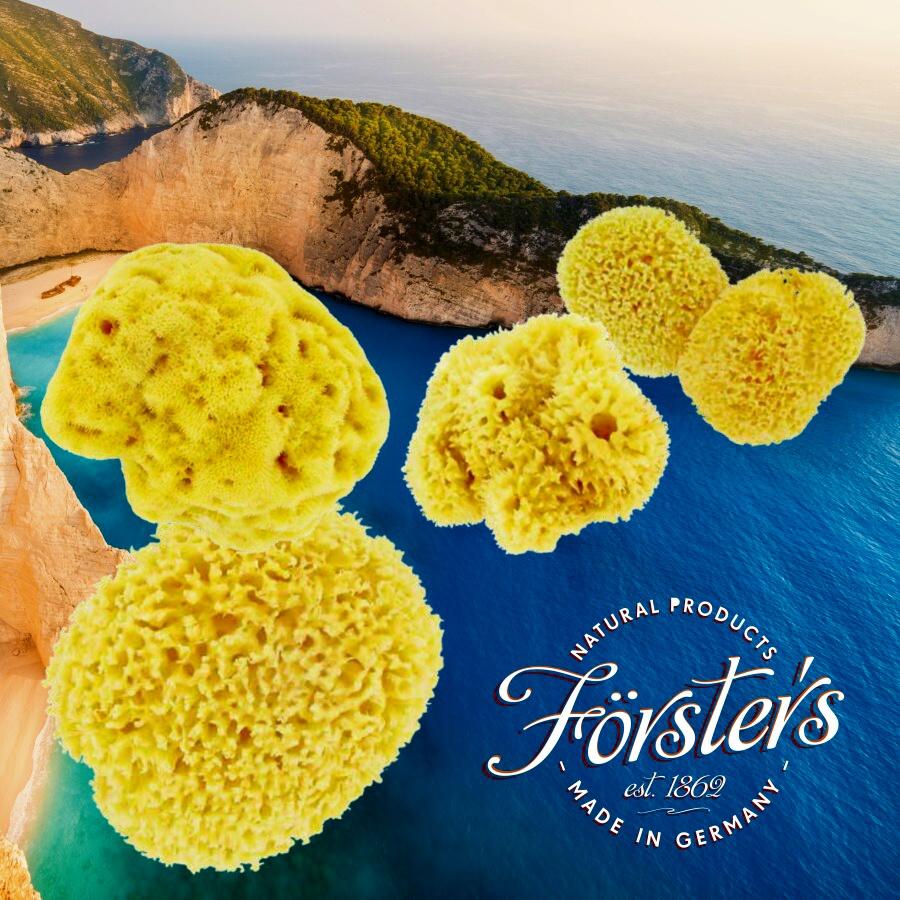 Förster´s přírodní mycí mořské houby