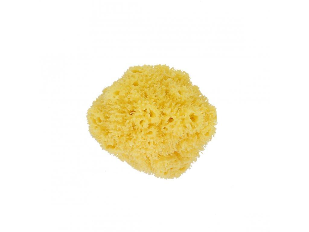 Förster´s přírodní mycí mořská houba - malá / pro děti