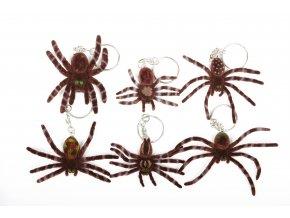 Pavouk sametový